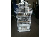 2 white yound budgies and large cage