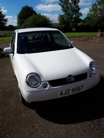2001 VW Lupo, must be seen