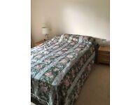 Furniture (2 beds + bedstands, armchair, sofa bed, desk, linen drawer)
