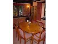 Ducal Victorian Pine extending oval dining table and 6 chairs in excellent condition.