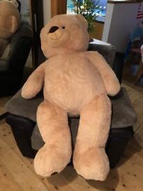 Giant teddy bear !