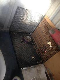 Xxl dog cage needs a good clean. Been in storage
