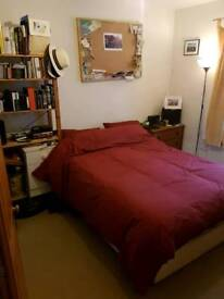 Large en suite double room in Putney