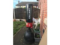 Standing punching bag