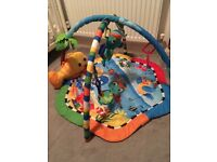 baby einstein rhythm of the reef play mat.