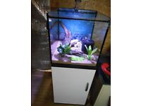 65 Litre Aquarium and stand with Filter and new heater