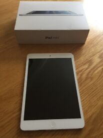 iPad Mini 16gb - wifi and cellular - silver and white