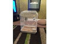 Budgie cage for 2 birds