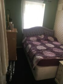 Room to let in three bedroom house