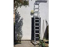 Telesteps 12 foot Telescopic Ladder