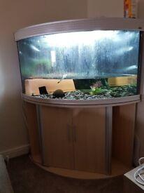 Aqua one 300litre!! Aquarium with full light and filter system.