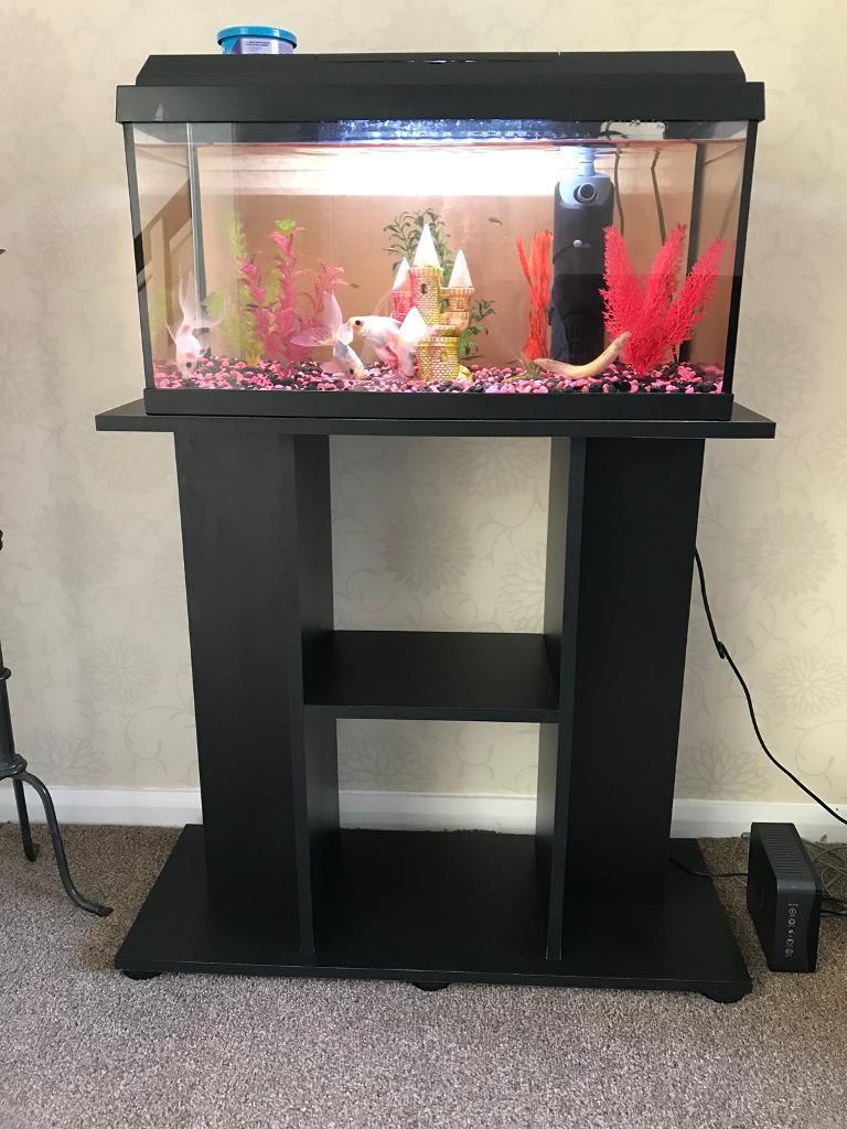 Juwel Aquarium Fish Tank And Stand In Trafford Manchester Gumtree