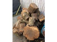 seasoned timber wood large pile