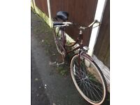 Vintage Ladies Raliegh Cameo Town Bike / Shopping Bike Can Deliver