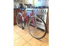 "Raleigh ""Pioneer 140"" Women's Mountain Bike (17.5"" Frame)"