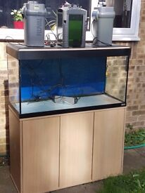 Fish tank full set up plus stand and lots of extras