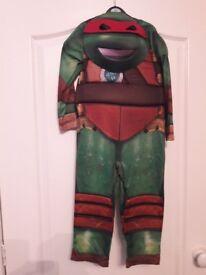 world book day costume or just fancy dress
