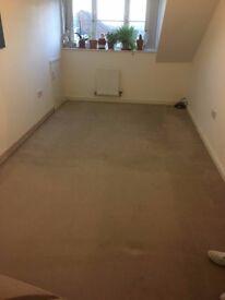 Beige Carpet * 12.5 m2 * Bergain!
