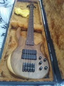 Overwater Scott Devine Signature Bass 5 String Mint Hard Case plus Mint TCBG250 112 Bass Amp