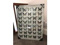 Butterfly canvas - greens