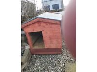 Large new dog kennel