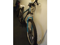 2 Adult Mountain Bikes BRAND NEW NEVER USED