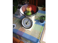 Classic Salter kitchen Scale