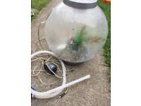 30l Biorb fish tank