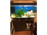 120 litre Eheim full Aquarium
