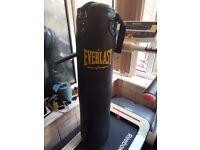 Everlast 4ft Punching Bag - as new
