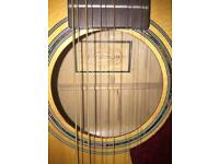 Freshman 12 string guitar comes with set of strings