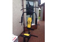 everlast multigym