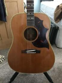 1964 Gibson Country And Western Model (SJN)