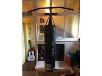 Boxing bag and pull up bar (with gloves)