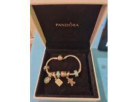 Childrens Pandora Bracelet with charms