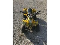 110cc thundercat quad bike with reverse
