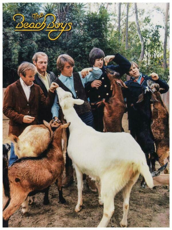the Beach Boys - POSTER - Pet Sounds Brian Wilson - EARLY Pic Wall Art