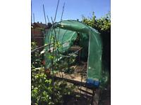 Garden poly tunnel SOLD