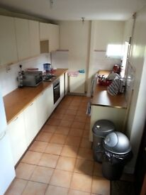 Large Double | Central Location | £90 PW | Available 1st Feb