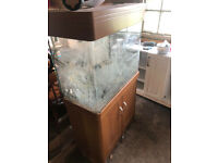 Aqua one 190L fish tank with some damage to the base including filter and light