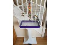 Budgie cage and stand
