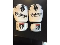 Badbreed leather boxing gloves