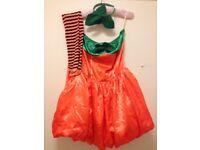 Pumpkin fancy dress outfit