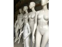 5 Designer Mannequins