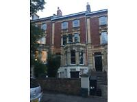 Double bedroom to rent - Clifton