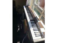 Piano: Casio PX-100