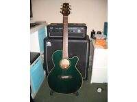SWAP Takamine EG140SGC Electro Acoustic Guitar Swap For Electric Guitar or Related Items SWAP