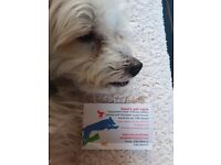 Dave's pet care. Dog walking,boarding for 2 dogs,small pet care,let outs/visits,feeds etc