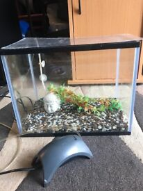 20l fish tank very nice with air pump gravel nice ornament all clean look pic 35 cm long