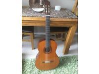 Yamaha Guitar and Taylor Gig Bag